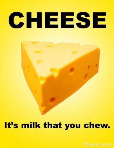 cheese its milk that you chew 386x500 cheese   its milk that you chew