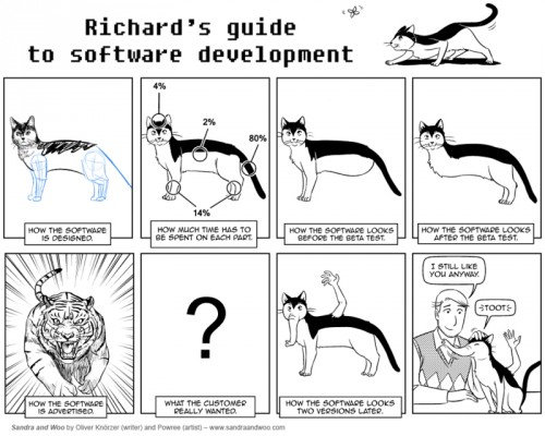 richards guide to software development 500x400 richards guide to software development