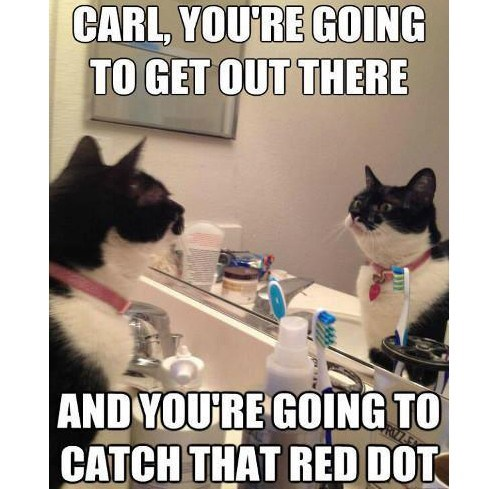 Get out there and catch that red dot Get out there and catch that red dot