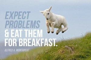 expect problems   and eat them for breakfast.jpg