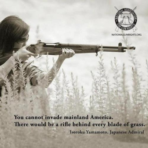 you cannot invade mainland america there would be a rifle behind every blade of grass 500x500 you cannot invade mainland america, there would be a rifle behind every blade of grass