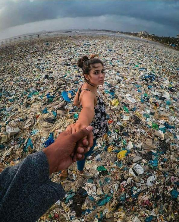 garbage patch romance garbage patch romance