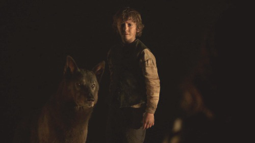 shaggydog-and-rickon-stark-game-of-thrones-direwolves-26320257-500-2812
