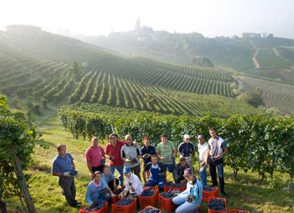 vietti_winery