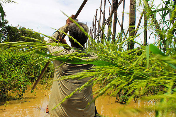 Cambodia_AlisonEngel_1