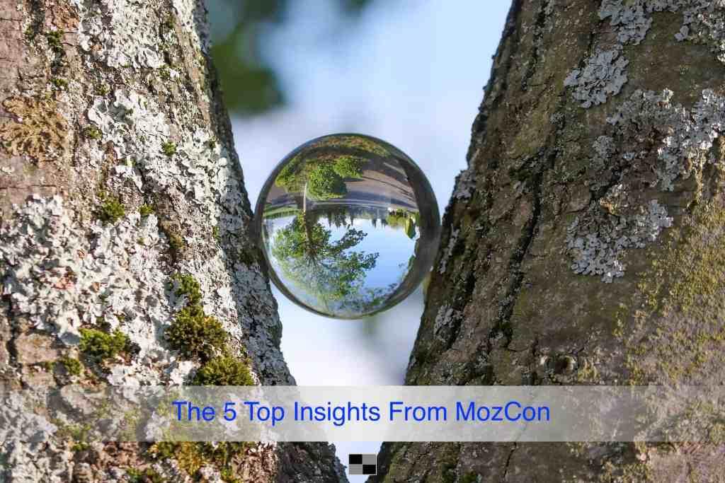 MozCon Insights