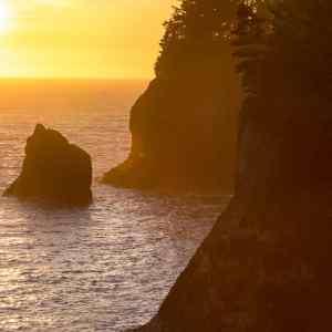 Coastal Sunlight