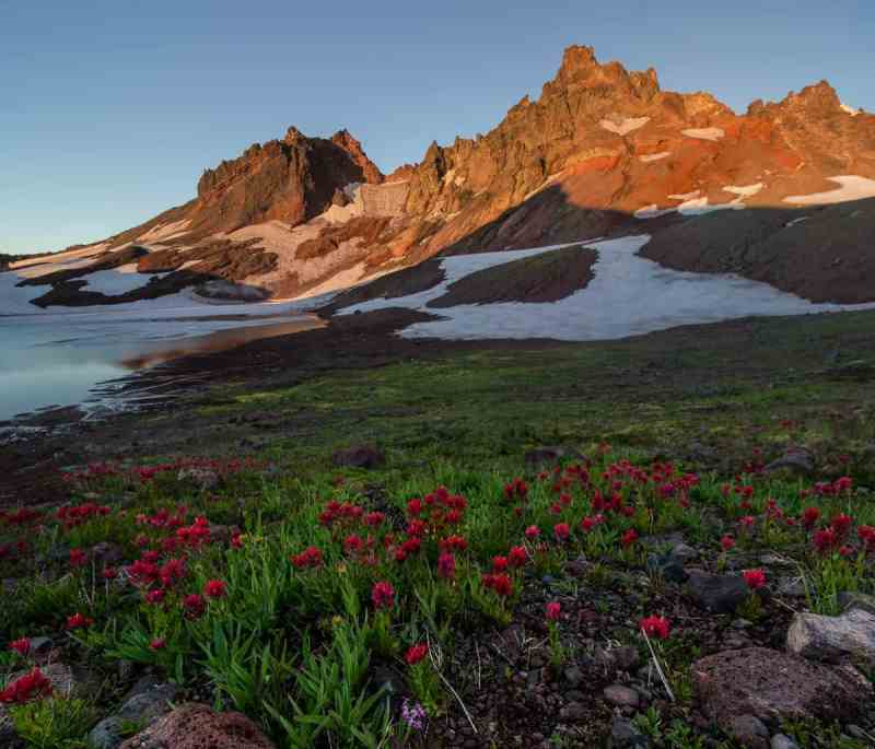 Indian Paintbrush and Broken Top