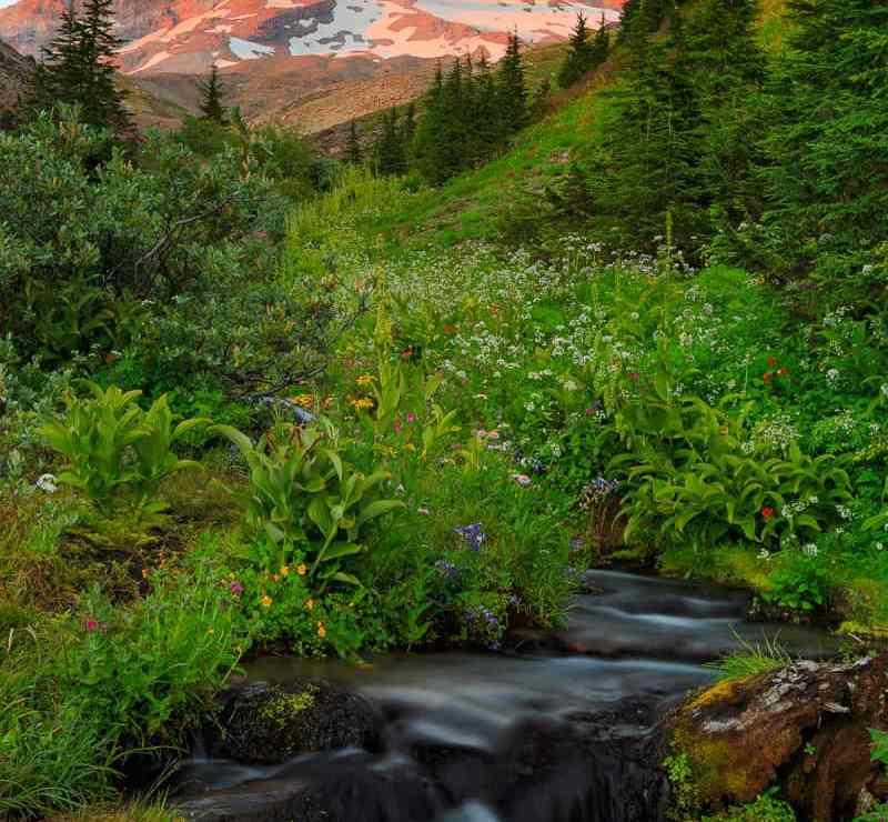 Lost Creek & Mt Hood