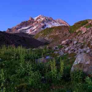 Rugged Mt Hood