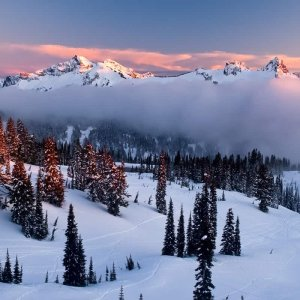 Snowclad Tatoosh