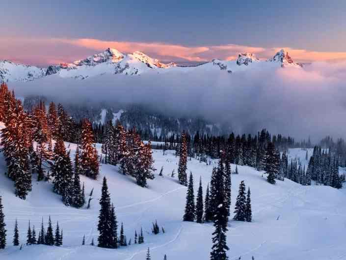 Snowclad Tatoosh