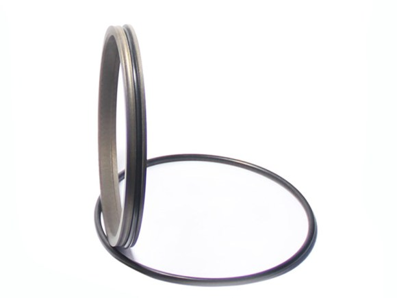 DPR-Cylinder Wiper Ring Dustproof Scraper Seal-detail-04