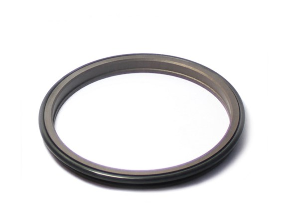 DPR-Cylinder Wiper Ring Dustproof Scraper Seal-detail-06