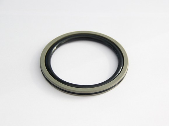DSH-Professional Piston Seal Piston Ring Supplier