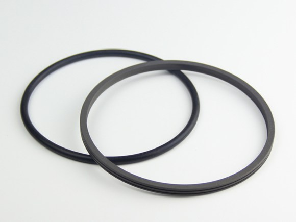 DSH-Find Shaft Oil Seal High Pressure Rotary Seal From Dsh Seals-6