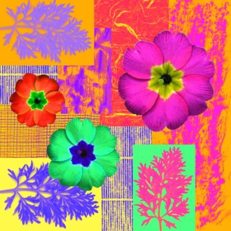 Fabric Design Collage