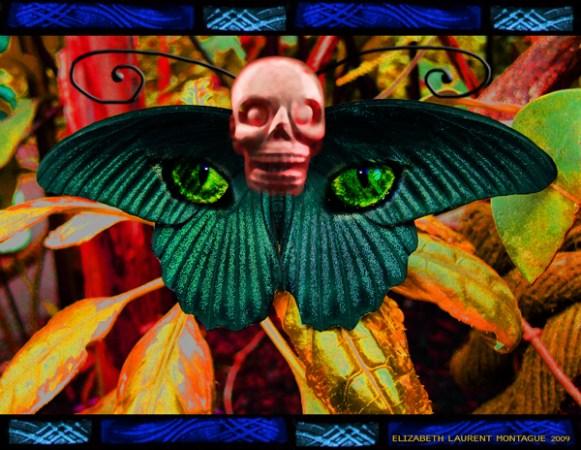 Mayan Feline Metamorphosis -Collage Art