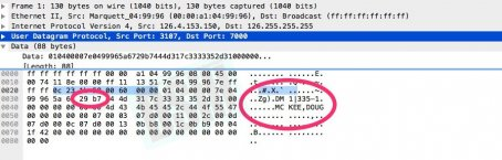 wireshark_name