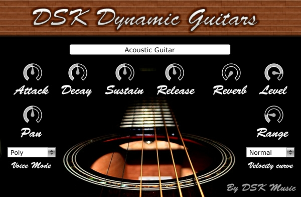 「DSK Music Dynamic Guitars」の画像検索結果