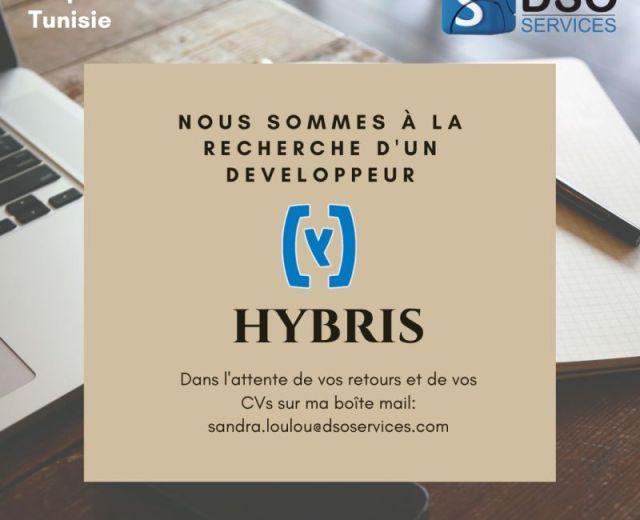 Développeurs Hybris