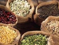 IBGE: Bahia lidera produção de grãos no Nordeste