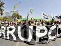 Basta de corrupção. Movimento chega à Bahia.