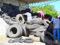 Saúde realiza mutirão de coleta de pneus
