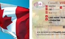 Novas regras para estudar e trabalhar no Canadá