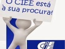 CIEE: 247 vagas de estágio para alunos de contabilidade