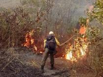 Incêndio na Chapada pode ser criminoso
