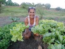 Estado oferece assistência técnica a 40 mil agricultores familiares