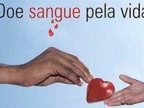 Criança colombiana recebe sangue de doador brasileiro
