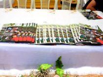 Alunos da zona rural produzem jornal sobre o semiárido