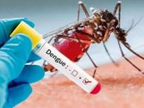 Arboviroses: 405 casos confirmados de Dengue, 3 de Zika e 5 de Chikungunya