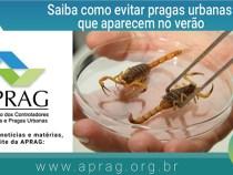 Verão gera alerta para combate à dengue e pragas, como ratos, baratas e cupins