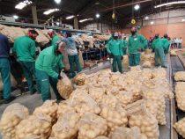 Em maio Bahia lidera geração de empregos no Nordeste: mais de 10 mil postos criados
