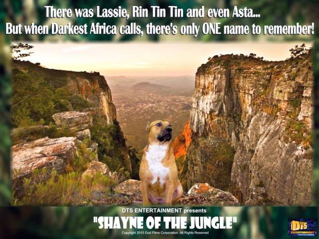 """Lobby Card for the DTS Entertainment Comedy Film, """"Shayne of the Jungle"""""""