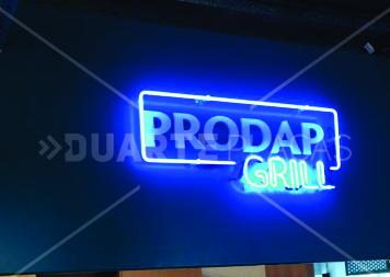 prodap grill 2