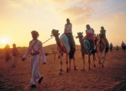 Dubai Experience Tours