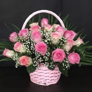 Popular pink roses 20