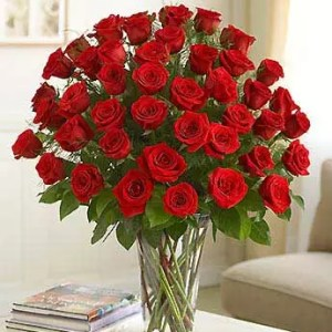 36 red roses blazing blooms