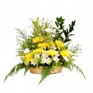 sunny bright wishes basket of yellow white flowers