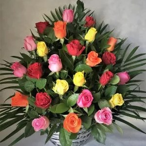 Melody of Nature 24 mix roses basket
