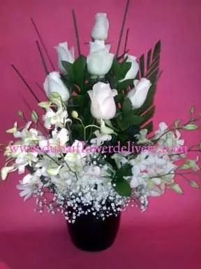 white roses orchids flowers Dubai 16