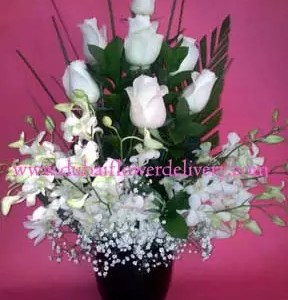 white roses orchids flowers Dubai 16