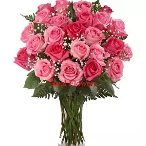 dark light pink roses 24 in a glass vase