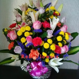 Majestic Creation Colorful flower basket