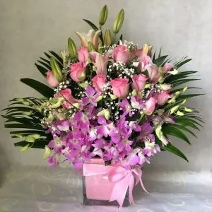 right choice pink flowers lady