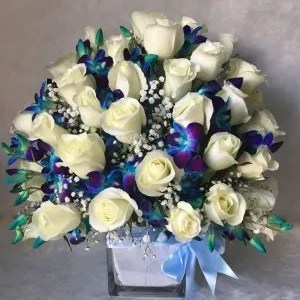 blue white flowers